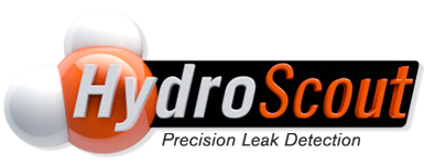 HydroScout Precision Water Leak Detection Florida